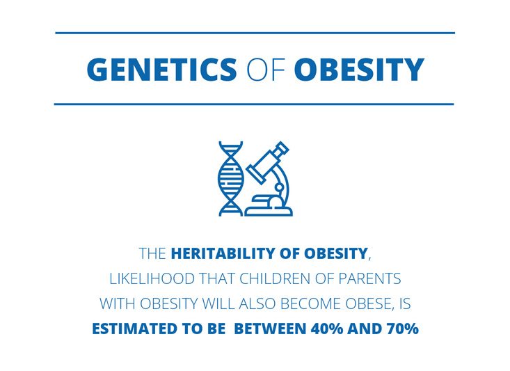Genetics of obesity